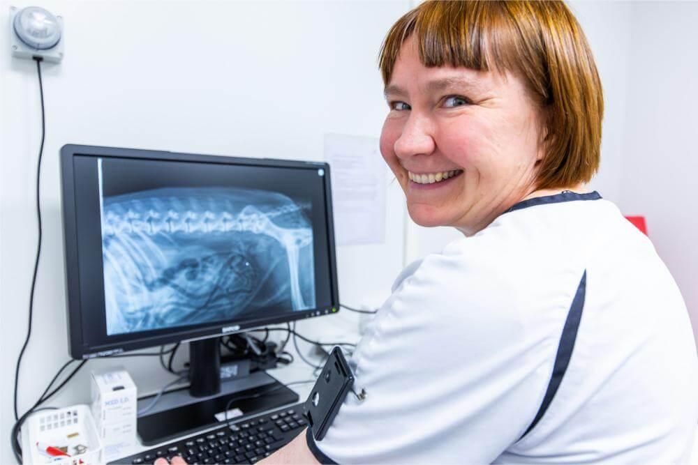 Eläinlääkäriasema Sun - Röntgentutkimukset